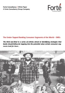 The Under-Tapped Banking Consumer Segments of the World – SMEs