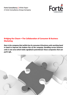 Bridging the Chasm – The Collaboration of Consumer & Business Marketing