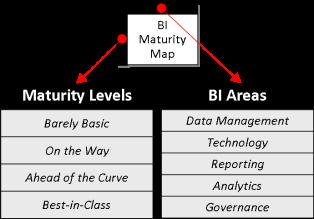 BI Maturity