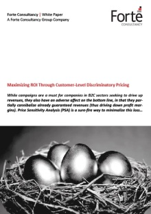 Maximizing ROI Through Customer-Level Discriminatory Pricing