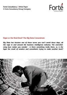 Hype or the Real Deal - The Big Data Conundrum